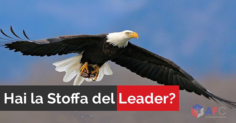 HAI LA STOFFA DEL LEADER?